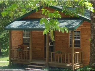 Beautiful 1 bedroom Cabin in Harrison - Harrison vacation rentals