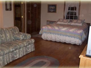 1 bedroom Cabin with Internet Access in Harrison - Harrison vacation rentals
