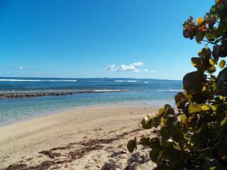 Beach Front Beautiful 3/br,2/ba. Home w/lg. porch - Isla de Vieques vacation rentals