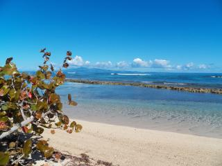 Beach Front Beautiful 3/br,2/ba. Home w/lg. porch - Isla de Vieques vacation rentals
