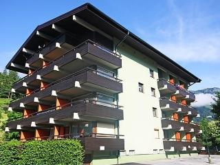 Sunny 1 bedroom Apartment in Bad Hofgastein - Bad Hofgastein vacation rentals