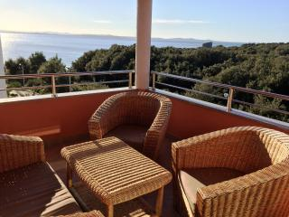 Luxury**** Apartment 12, Sea View, Kožino-Zadar - Kozino vacation rentals