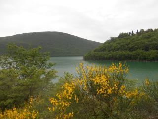 Old Brick House nature escape in amazing landscape - San Severino Marche vacation rentals