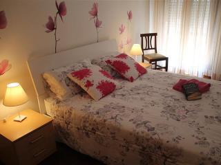 Casa Di Carlotta - Spazioso e splendido appartamen - Mogliano Veneto vacation rentals