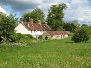 Rambler's Cottage, Heart of Dorset - Blandford Forum vacation rentals