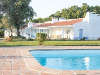 casa de campo na paz alentejana - Viana do Alentejo vacation rentals
