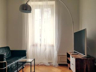 1 bedroom Apartment with Internet Access in Basel - Basel vacation rentals