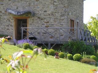 Gîte des Moineaux (Sparrow's barn) - Champagnac-le-Vieux vacation rentals
