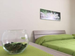 Beautiful 3 bedroom Condo in Trapani - Trapani vacation rentals