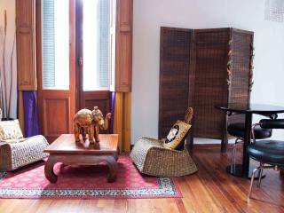 Studio Hindú - Buenos Aires vacation rentals