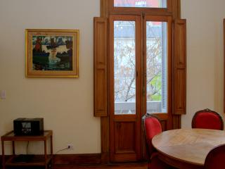 Charming Condo with Television and Microwave - Buenos Aires vacation rentals