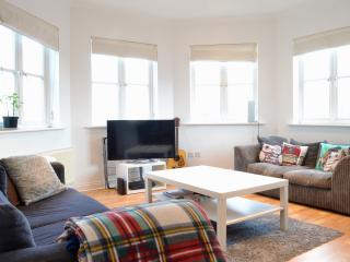 Stunning 2BD in trendy Brixton - London vacation rentals