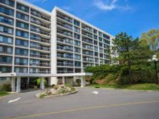 Sunny 1 bedroom Condo in White Plains - White Plains vacation rentals