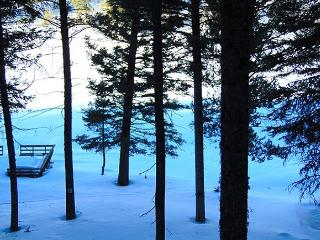 Lake Escape located on the Henry's Lake Outlet. - Island Park vacation rentals