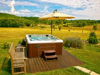 Mulberry Tree Villa in the Dordogne near Sarlat - Sarlat-La-Caneda vacation rentals