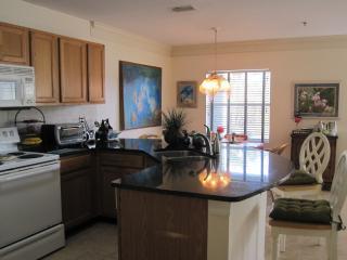 Oceanfront Complex, Hibiscus, on Best Beach - Saint Augustine Beach vacation rentals