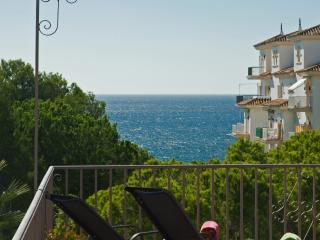Beachfront Penthouse, sea & mountain views. WiFi - Puerto José Banús vacation rentals