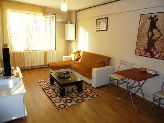 Cozy Istanbul Condo rental with Housekeeping Included - Istanbul vacation rentals