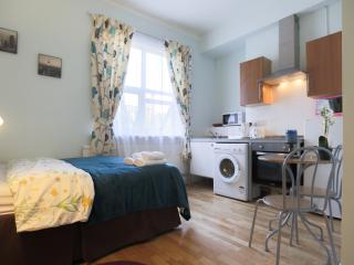 Double Studio in Zone 2 London No8 - London vacation rentals