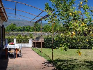 Lovely Villa Near The Sea And The Volcano Etna - Fondachello vacation rentals