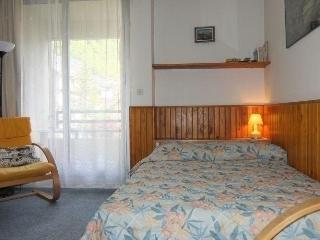 Cozy Studio with Television and Long Term Rentals Allowed in Cauterets - Cauterets vacation rentals