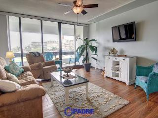Remodeled 2 bedroom Condo at the entrance to the New Schlitterbahn Water Park - Corpus Christi vacation rentals