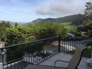 Lovely Contemporary Retreat- 0.5mi. walk to Beach - Carmel vacation rentals
