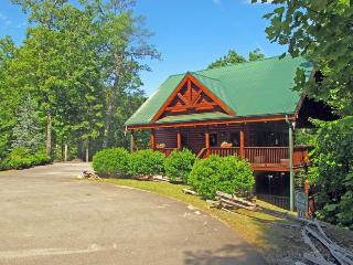 3 bedroom Cabin with Internet Access in Wears Valley - Wears Valley vacation rentals