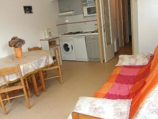 Nice 1 bedroom Bareges Apartment with Dishwasher - Bareges vacation rentals