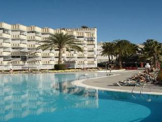 Nice Studio with Internet Access and Long Term Rentals Allowed (over 1 Month) - Playa del Ingles vacation rentals