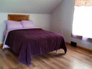 Chautauqua Area House Rental, Sleeps 6 - Ashville vacation rentals