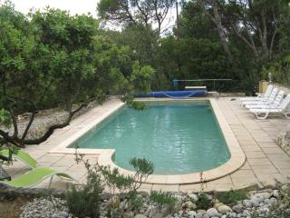 Vacation house for rent in Provence with pool - Uchaux vacation rentals