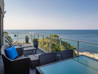 Ocean Front Beach House, close to central Tokyo! - Tateyama vacation rentals