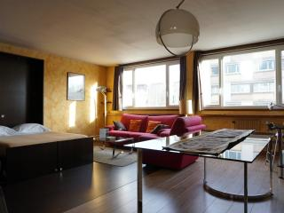 115001  rue de Vaugirard  PARIS 15 - 7th Arrondissement Palais-Bourbon vacation rentals