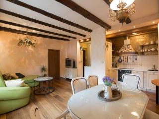 Tuscan Style In The Heart Of Zagreb - Zagreb vacation rentals