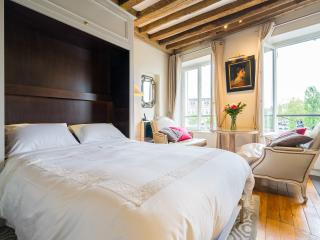 Notre Dame lux. apt with lift & river views low season 150 € /high season 195 € - Paris vacation rentals