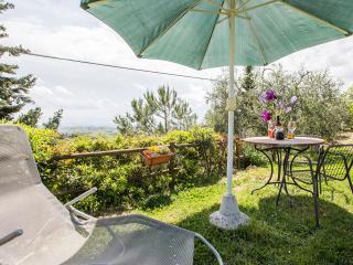 Casa Vacanze Poggio ai Venti - Il Papavero - Certaldo vacation rentals