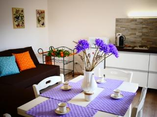 Marilyn's House 2 - Casa Indipendente in centro - Frascati vacation rentals