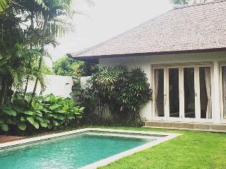 Villa Tilu - Denpasar vacation rentals