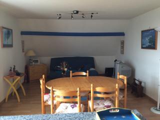 appartement au bourg de Plouguerneau - Plouguerneau vacation rentals