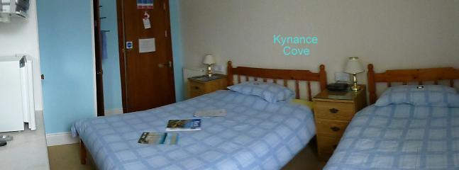 The Silver Jubilee Kynance Cove - Newquay vacation rentals