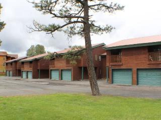 Renee`s Place is a cute and quiet vacation condo in Pagosa Springs, Colorado. - Pagosa Springs vacation rentals