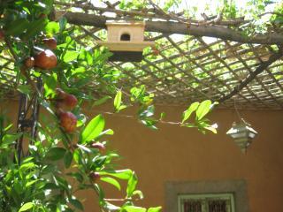 3 bedroom House with Internet Access in El Kelaa M'gouna - El Kelaa M'gouna vacation rentals