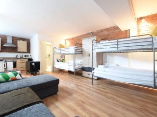 High Spec Basement Studio (42) - Manchester vacation rentals