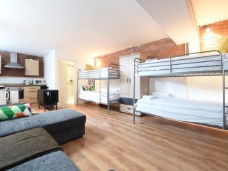 High Spec Basement Studio (42) - Manchester vacation rentals