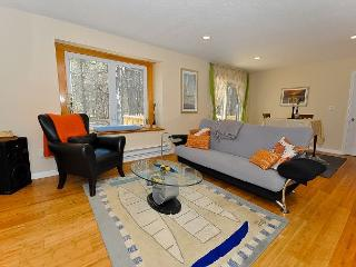 BRAND NEW 3BR Condo w/Pool,AC in every room,Tennis, Saco River access! - Bartlett vacation rentals