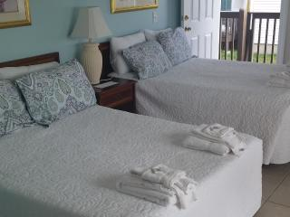 Nice Resort with Television and Microwave - New Hampton vacation rentals
