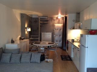 Magnifique Duplex tout confort - Gaillard vacation rentals