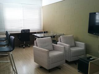 apartamento 1 dormitório - próximo UFRGS - Porto Alegre vacation rentals