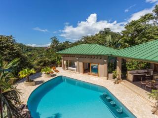 Casa Estrella del Mar-Ultra Luxury Jungle Home - Manuel Antonio National Park vacation rentals